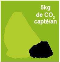 gradient_indice_carbone